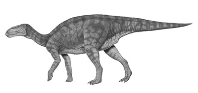 An artist's impression of Equijubus