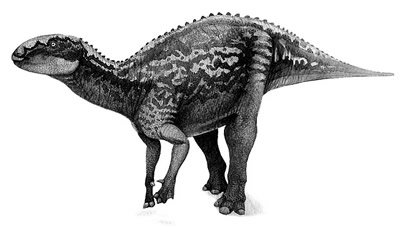 An artist's impression of Fukuisaurus