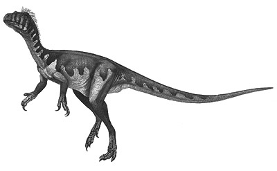 An artist's impression of Guaibasaurus