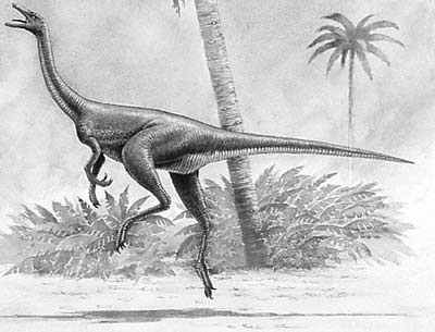 An artist's impression of Harpymimus