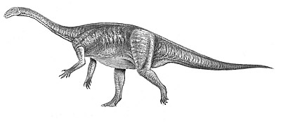 An artist's impression of Jingshanosaurus