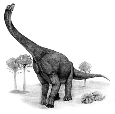 An artist's impression of Ligabuesaurus