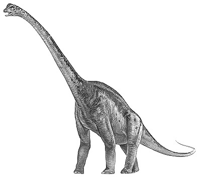 An artist's impression of Malawisaurus