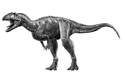 An artist's impression of Marshosaurus