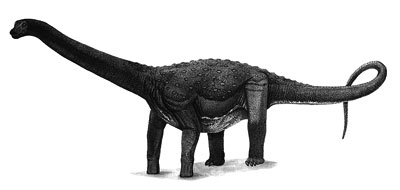 An artist's impression of Maxakalisaurus