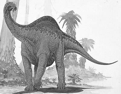An artist's impression of Melanorosaurus