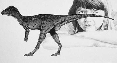 An artist's impression of Micropachycephalosaurus