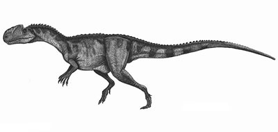 An artist's impression of Monolophosaurus