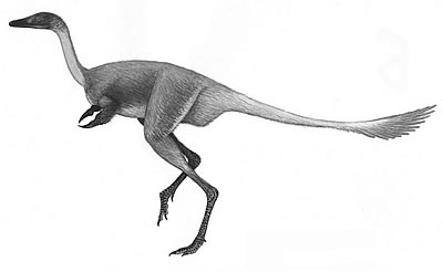 An artist's impression of Mononykus