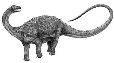 An artist's impression of Neuquenosaurus
