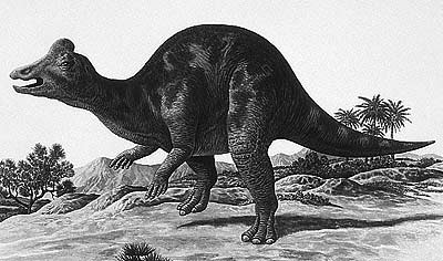 An artist's impression of Nipponosaurus