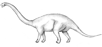 An artist's impression of Patagosaurus