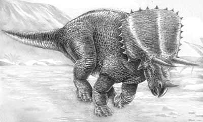 An artist's impression of Pentaceratops
