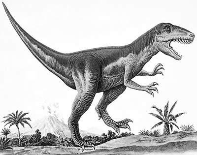 An artist's impression of Piatnitzkysaurus