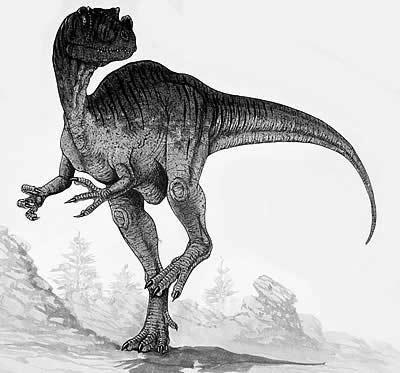 An artist's impression of Proceratosaurus