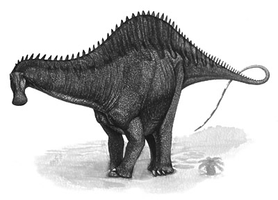 An artist's impression of Rebbachisaurus