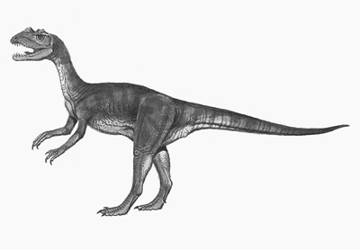An artist's impression of Sarcosaurus