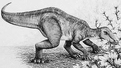 An artist's impression of Secernosaurus