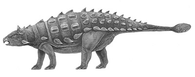 An artist's impression of Shamosaurus
