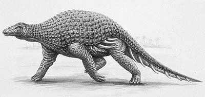 An artist's impression of Silvisaurus
