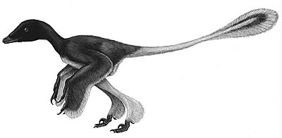 An artist's impression of Sinornithosaurus