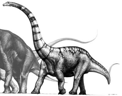 An artist's impression of Supersaurus
