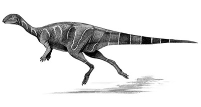 An artist's impression of Valdosaurus