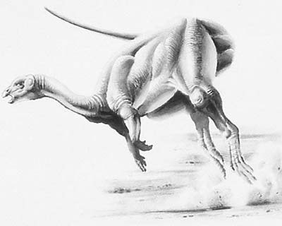 An artist's impression of Yandusaurus
