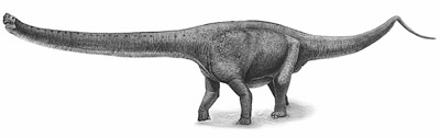 An artist's impression of Yuanmousaurus
