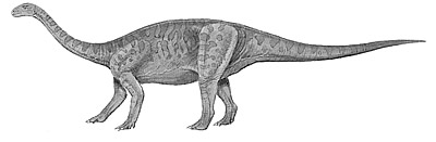 An artist's impression of Yunnanosaurus