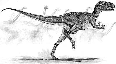 An artist's impression of Abelisaurus