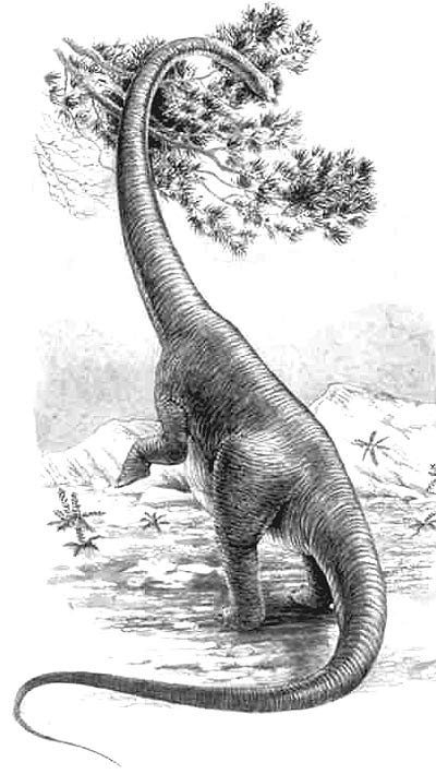 An artist's impression of Alamosaurus