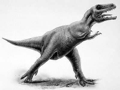 An artist's impression of Albertosaurus
