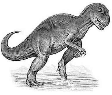 An artist's impression of Allosaurus
