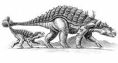 An artist's impression of Ankylosaurus