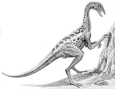 An artist's impression of Anserimimus