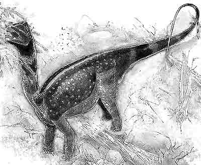 An artist's impression of Antarctosaurus