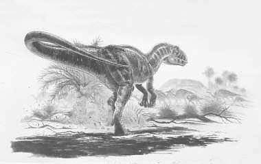 An artist's impression of Carcharodontosaurus