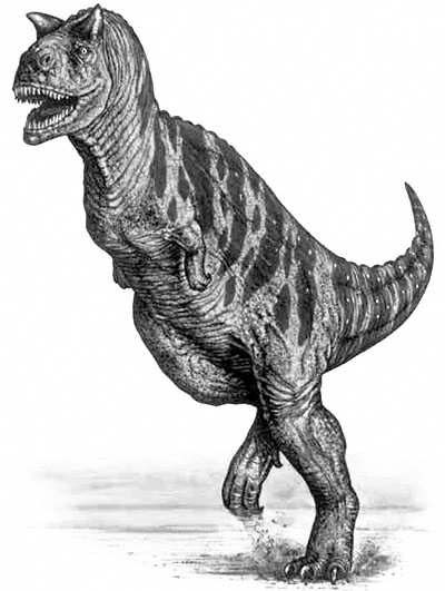 An artist's impression of Carnotaurus