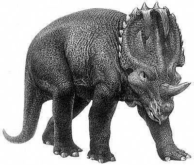 An artist's impression of Centrosaurus