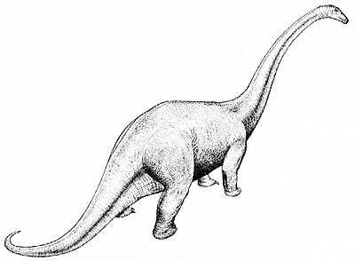 An artist's impression of Cetiosauriscus