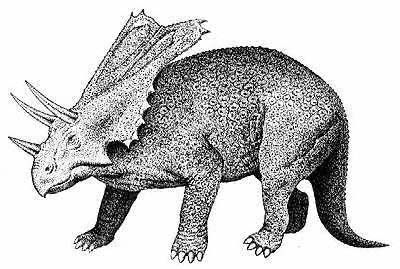 An artist's impression of Chasmosaurus