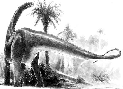 An artist's impression of Datousaurus