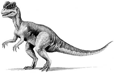 An artist's impression of Dilophosaurus