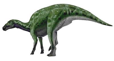 Edmontosaurus milieu