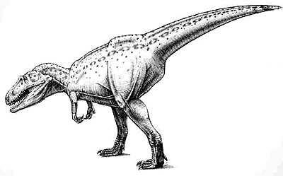 An artist's impression of Giganotosaurus