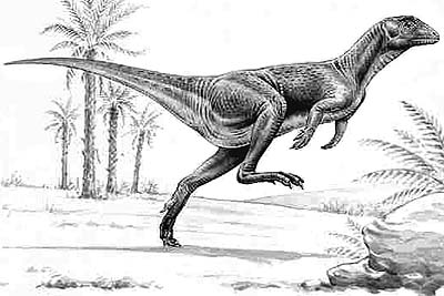 An artist's impression of Heterodontosaurus