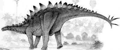 An artist's impression of Huayangosaurus