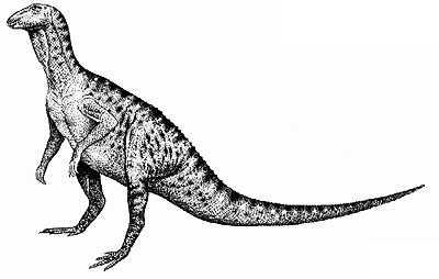 An artist's impression of Hypsilophodon