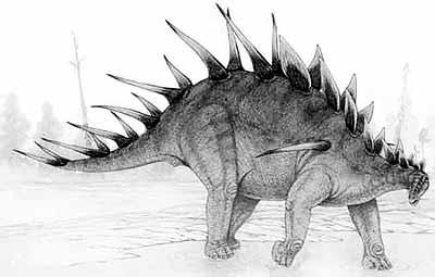 An artist's impression of Kentrosaurus